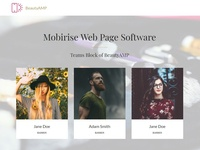 Mobirise Web Page Software - Teams Block of BeautyAMP