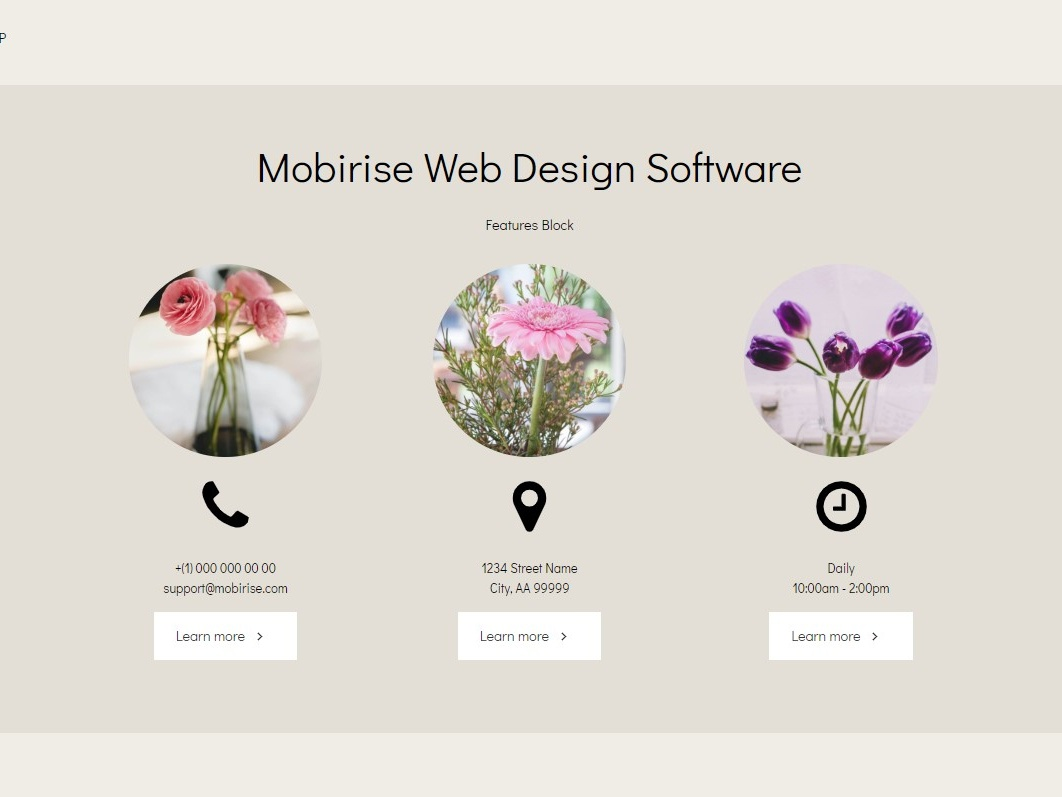 Mobirise Web Design Software Features Block Resumeamp By Mobirise