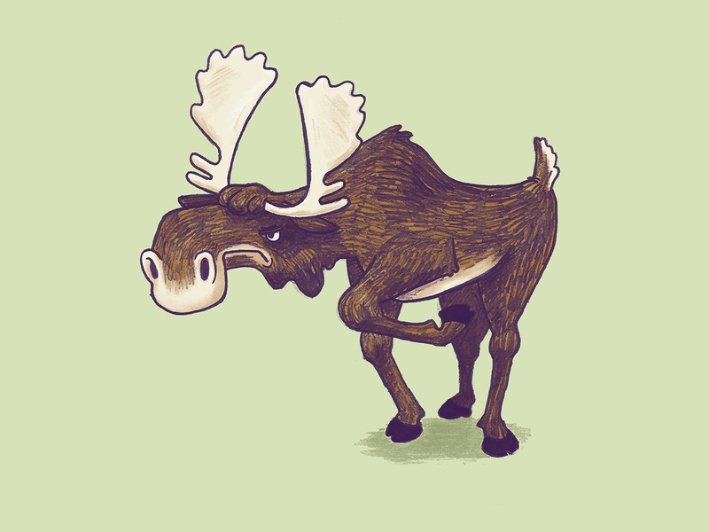 Spike the Moose nature angry animal moose kidlitart kids illustration kidlit childrens illustration childrens book character character design illustration