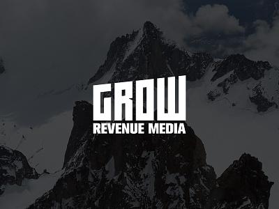 Grow seo chart media revenue grow