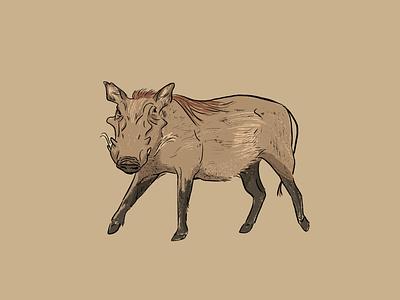 Warthog illustration procreate warthog