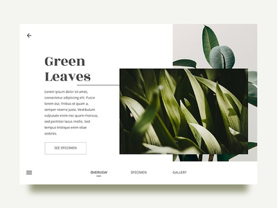 Leaves - Overview