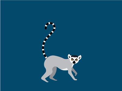 ringtail lemur ringtail lemur illustration animal
