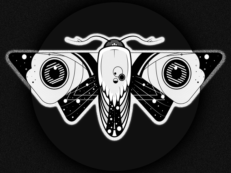 Moon Chaser moth design illustration vector adobe