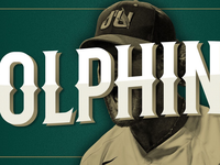 Dolphins Baseball