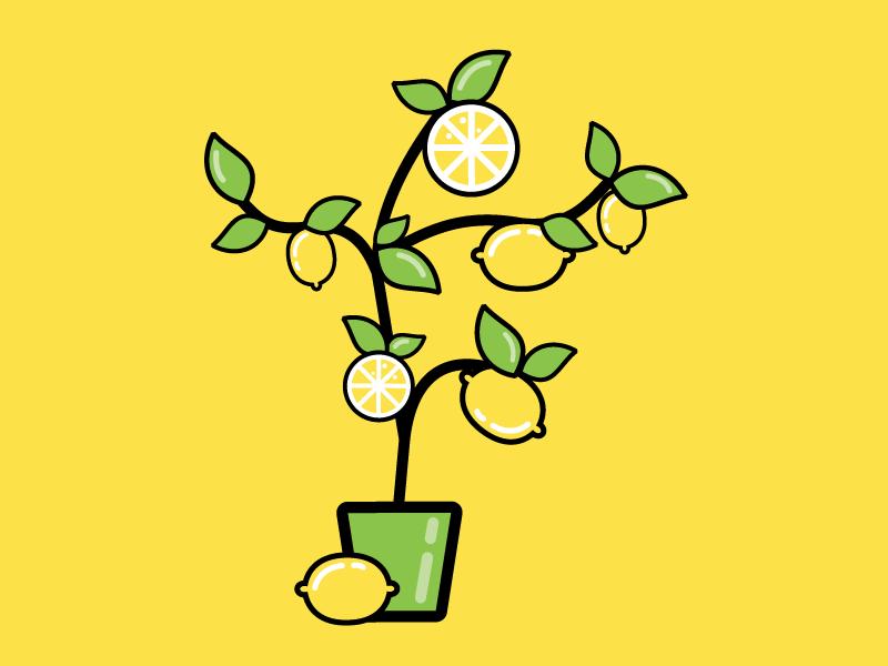 картинка лимонное дерево распечатать гибридов