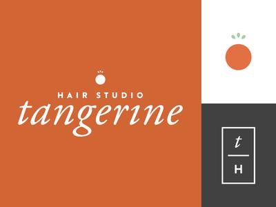 Salon Branding WIP typography branding identity orange fruit tangerine logo