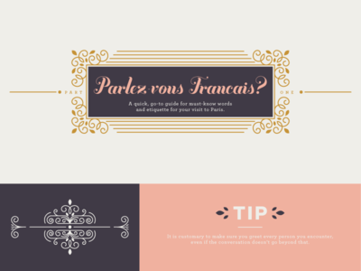 Parlez-vous Francais? typography pink girly french france paris