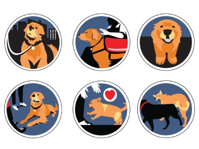 Icon Set  dog obedience dogs icon set icons ux web identity illustration branding