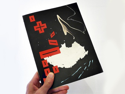 Booklet Design graphic design typography layout illustration booklet