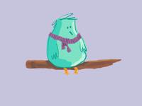 Diabetes Bird
