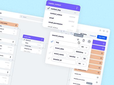 Schema Builder dengage blue management app design design ui relational database flows app dashboard panel editor builder schema