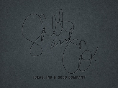 Salt + Co. identity