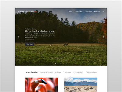 Designing a support for animals homepage news ia ux ui animals