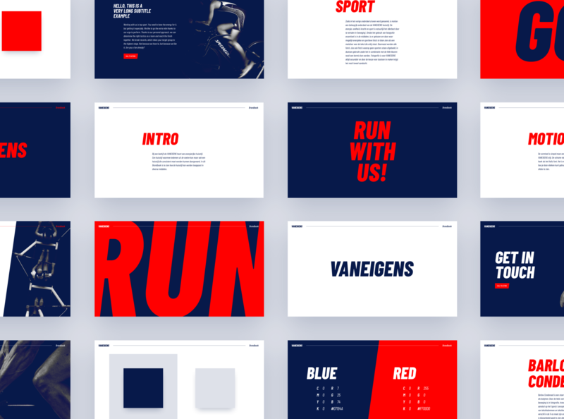 VANEIGENS - Visual Identity sports manifest colors visual style consulting salesforce logo typography visual identity corporate identity brandbook brand identity branding graphic design design