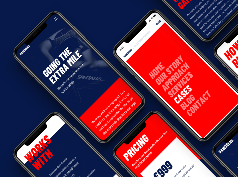 VANEIGENS - Visual Identity website websites sports salesforce consulting visual identity corporate identity digital design digital ui design webdesign user interface ui typography brand identity branding graphic design design