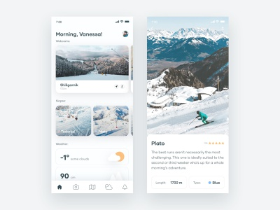 Ski Resort Concept design android explore weather rating mobile cards white snow mountain ski ios app layout minimal interface clean ux ui