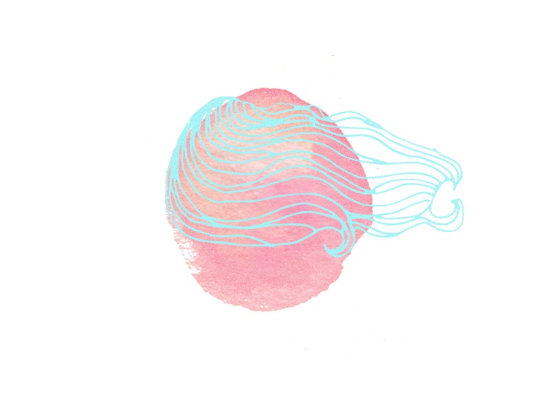 dribbble-image