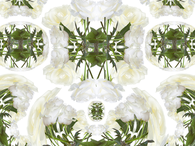 *insert outkast lyrics* warp grid botanical roses design