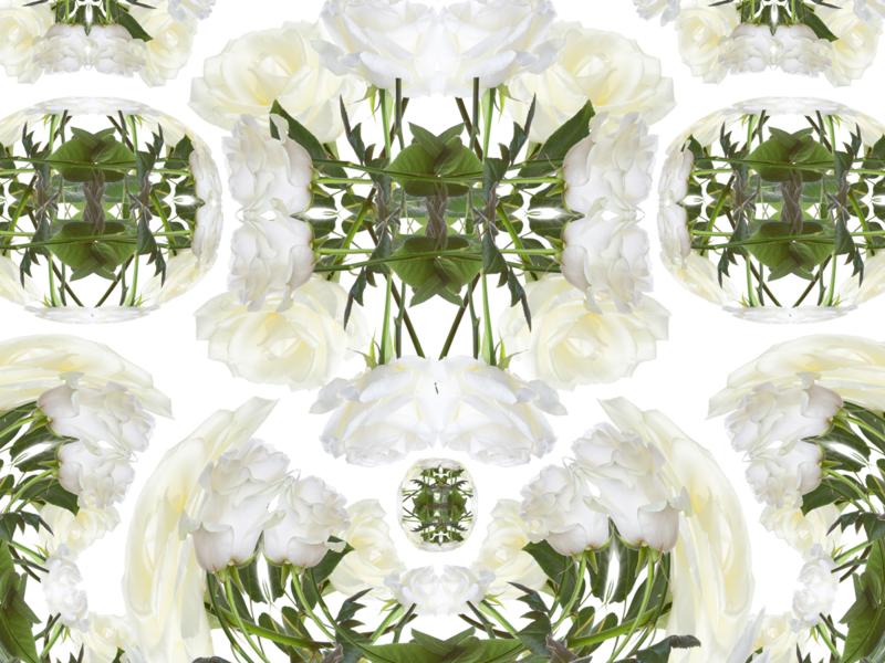 *insert outkast lyrics* warp grid botanical roses design