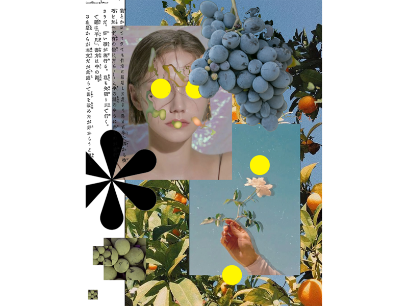 call me by your collage collage