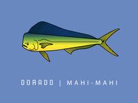 Dorado | Mahi - Mahi