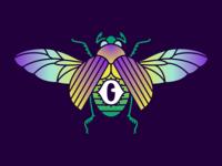 Eye Beetle