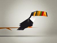 Triangular Toucan...