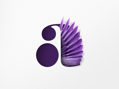 A shopify sleek feathers purple appicon icon a