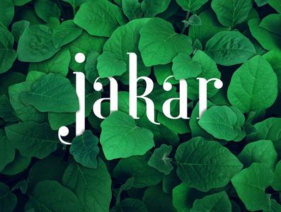 Jakar Logo illustration branding logo graphic mockup design