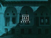 Bariz University Logo