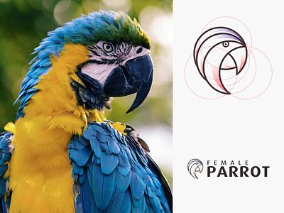 FEMALE PARROT logo mark vector logotype modern awesome female parrot animal brand minimal lineart illustration design logo icon graphic design