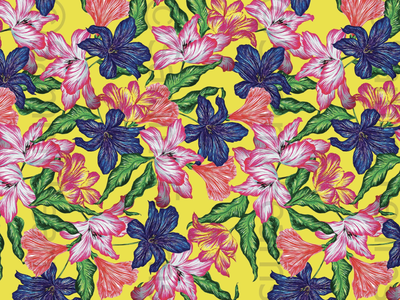 Vibrant illustrator graphic design vector pattern print illustration design