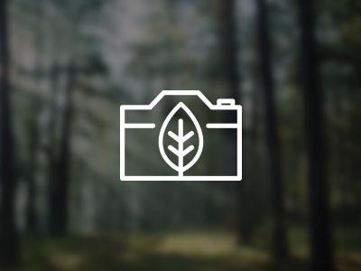 Feeling Wild Photography photography photo nature leaf camera logo