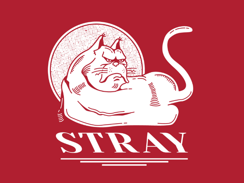 Stray Cat grumpy mean red hand drawing illustration cat stray