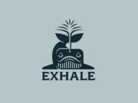 Exhale whale geometric design animal logotype illustration stream exhale whale