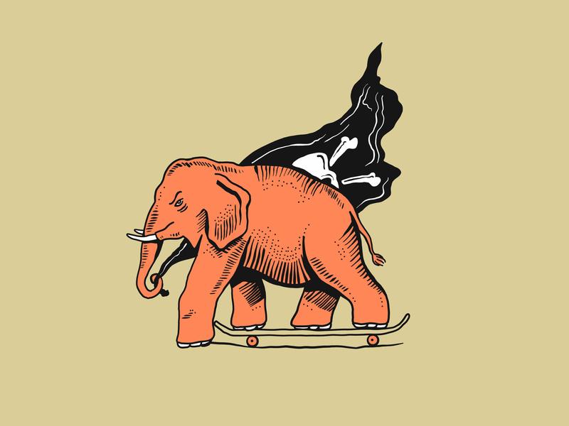 Keep Pushing illustration drawing skateboard flag pirate elephant