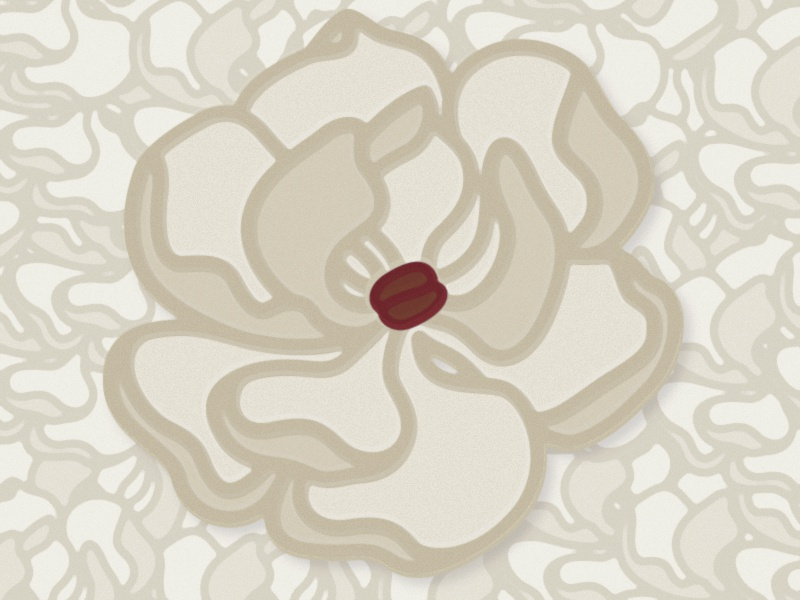 Coffee Bean Magnolia illustration vector flower magnolia