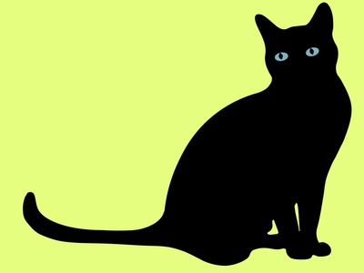 Black cat with lucky day animals black cat vector illustration graphic design