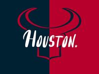 Houston Texans typography