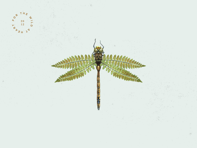 For the Wild at Heart dragonfly insect illustration collage branding botany