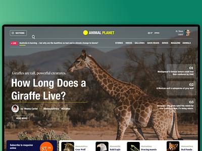 Magazine Online UI uidesign design ui app concept user interface