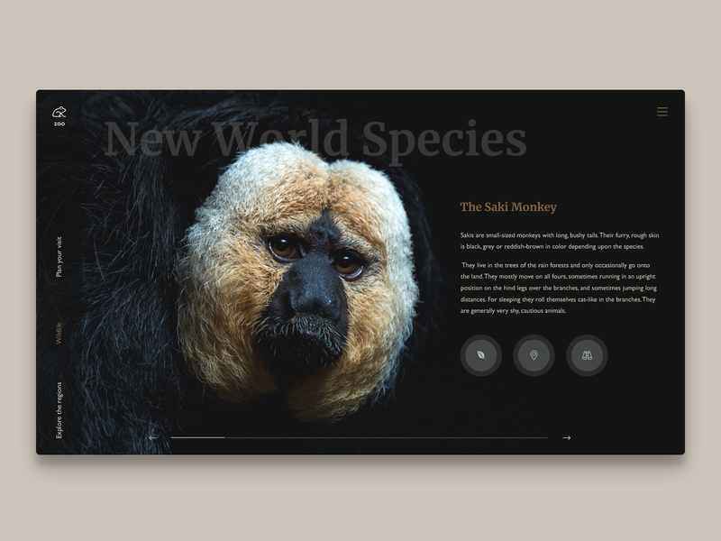 Featured wildlife page for a zoo webapp webdesigner web design appdesign app uxdesign designinspiration uidesign dailyinspiration userinterface uiux webdesign website concept ux ui darkdesgin landingpage