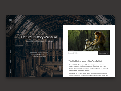Concept for London's National History Musuem