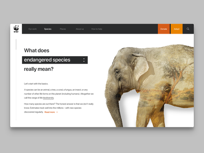 World Wildlife Fund Concept Page