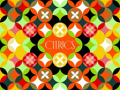 Citrics Grid illustration nature drink lime pattern grapefruit flower grid orange lemon citric