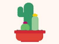 Cool as a Cacti