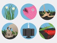 Fish Tank Guide Icons