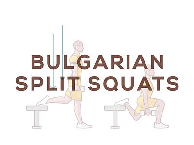 Bulgarian Split Squat quadracep knee pain illustration