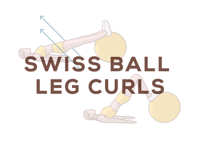 Swiss Ball Leg Curls hamstring knee pain illustration